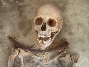 One of the Drawsko 'vampires', aka 'Individual 49/2012' a 30–39 year old female with a sickle placed across the neck (PLOS ONE)